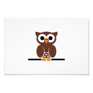 Owl cartoon photographic print