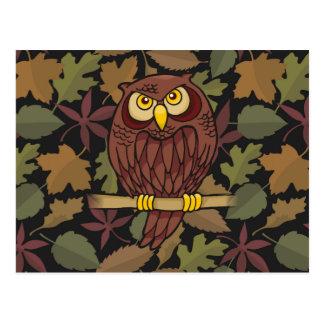 Owl Cartoon Post Cards