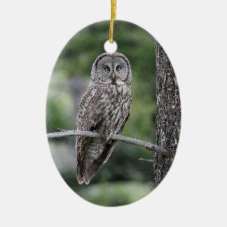 Owl Christmas Ornament - Great Grey Owl