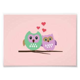 Owl couple photo print