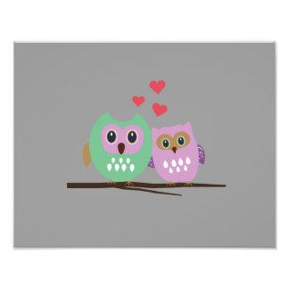 Owl couple art photo