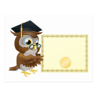 Owl diploma certificate background post cards