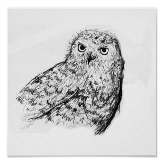 Owl drawing black and white poster