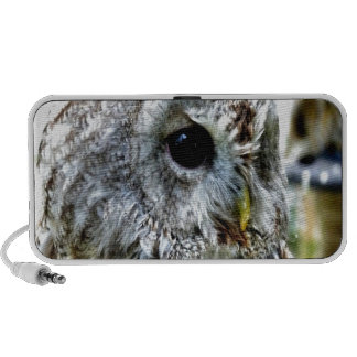 Owl eye enloy beautiful world mp3 speaker