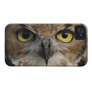 Owl Eyes Case-Mate Blackberry Case