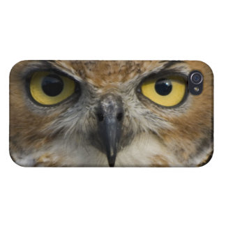 Owl Eyes Covers For iPhone 4