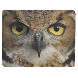 Owl Eyes Journal