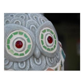 Owl Eyes Post Card