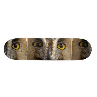 Owl Eyes Custom Skateboard