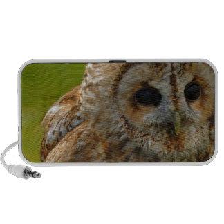 Owl Eyes Speaker System