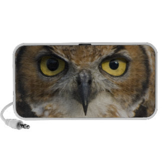 Owl Eyes Travelling Speakers