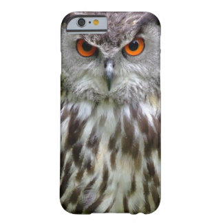Owl Face Barely There iPhone 6 Case