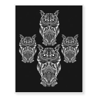 owl family stay together
