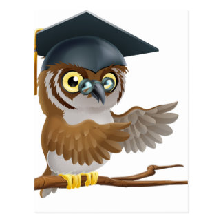 Owl graduate or teacher postcard
