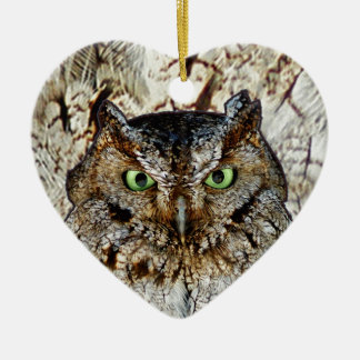 Owl Hoot Eyes Animal Bird Christmas Ornament