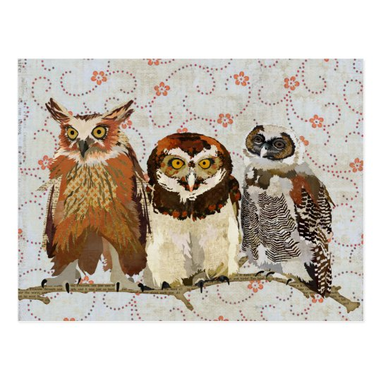 OWL IN A ROW Postcard