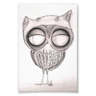 Owl in Cat-Hat Photo Art
