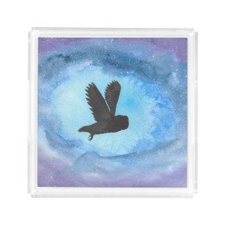 Owl In Flight Tray