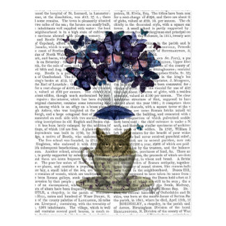 Owl In Teacup Postcard