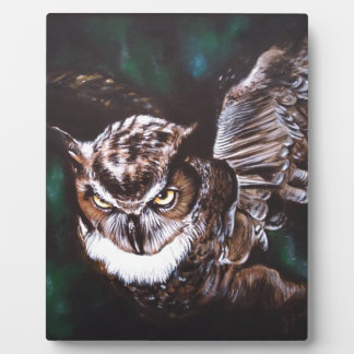Owl in the night plaque