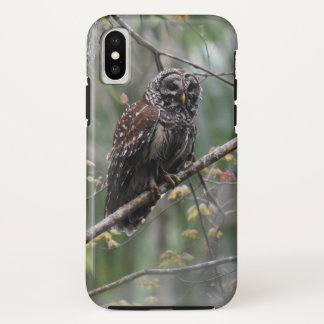 Owl iPhone X Phone Case