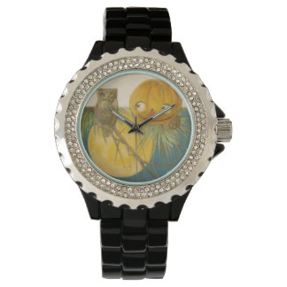 Owl Jack O Lantern Pumpkin Full Moon Watch