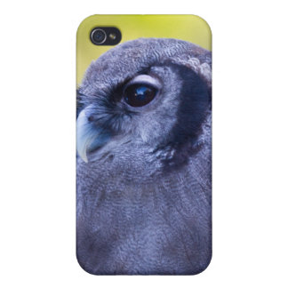 Owl Milky Eagle iPhone 4 Cover