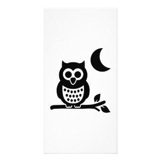 Owl moon night photo card