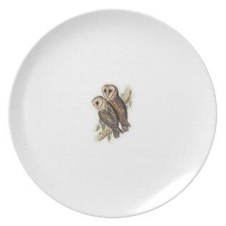 Owl Motif Plate