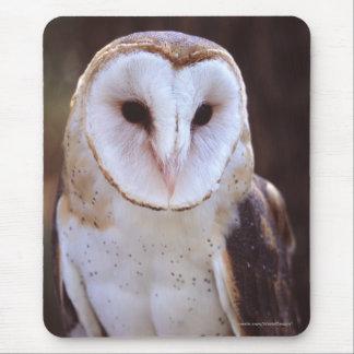owl mouse mat