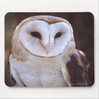 owl mouse pads