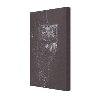 Owl - Original Drawing - Canvas Print