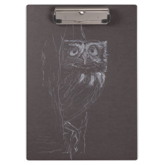 Owl - Original Drawing - Clipboard