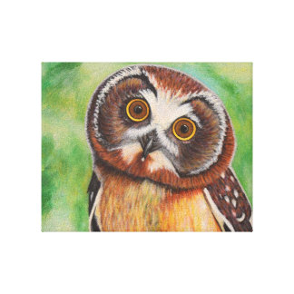 Owl Painting on Canvas Canvas Print
