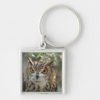 Owl Perch Keychain