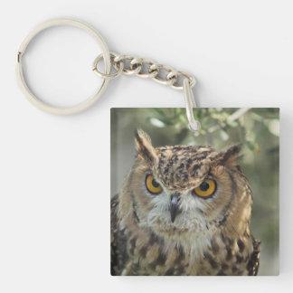 Owl Perch Square Acrylic Key Chains