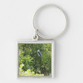 Owl perching on a tree Silver-Colored square key ring