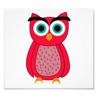 Owl Photo Art