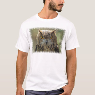 Owl Photo Men's T-Shirt
