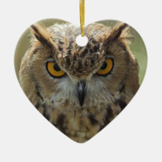 Owl Photo Ornament