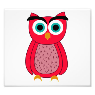 Owl Photo Print