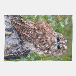 owl photograph tea towel