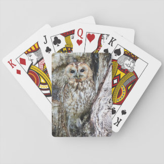 Owl Playing Cards Owl in Camouflage in Old Tree