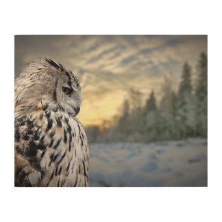 Owl portrait on winter forest background wood wall art
