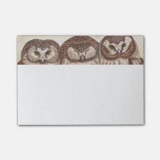 Owl post it note pad