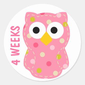 Owl Pregnancy Sticker