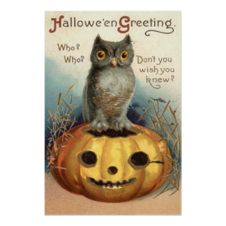 Owl Pumpkin Jack O Lantern Poster