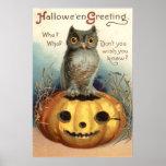 Owl Pumpkin Jack O Lantern Print