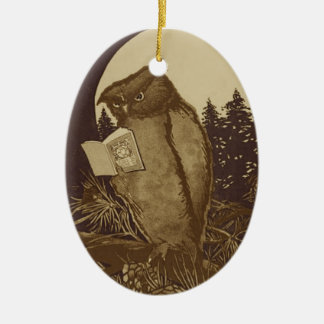 Owl Reading a book by Moonlight Christmas Ornament