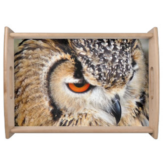 OWL SERVING TRAY